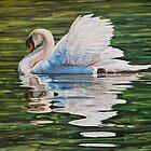 Swan by HDPotwin