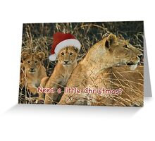 'Cuz we need a little Christmas... Greeting Card