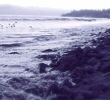A Strand on a Dreamy Beach by Ray Schiel