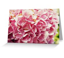 butterfly petals Greeting Card