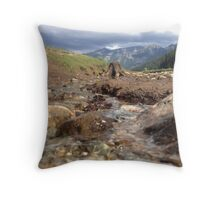 Flowing Creek Beneath the Mountains  Throw Pillow