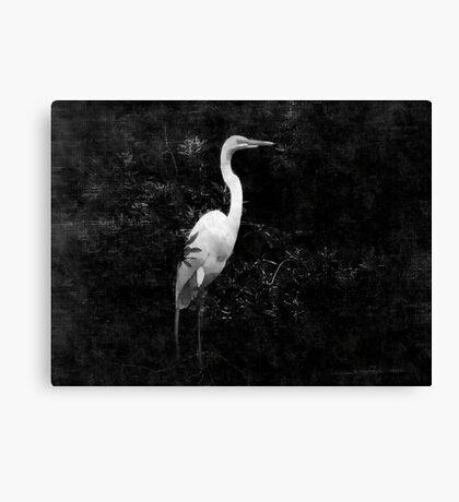 Monochrome / 3 Canvas Print