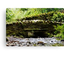 Stream in the Lake District Canvas Print