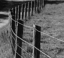 Never ending fence by ianzer