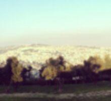 Jerusalem Panorama Sticker