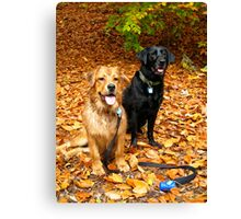 Raleigh and Toby in Fall Canvas Print