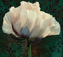 Poppy and Verdigris, dramatic cream poppy floral art by Glimmersmith