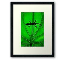 Hello Gecko! Framed Print