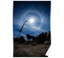 Dogs On Mars- Sumo our Staffie in the Solar Halo Poster
