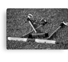 Polo mallets on the field Canvas Print