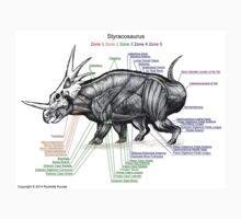 Styracosaurus Muscle Study Baby Tee