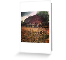 Rustic Red Barn surrounded by Thistles  Greeting Card