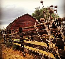 Weathered Fence Posts with Rustic Red Barn by JULIENICOLEWEBB