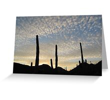 Tucson Mountain park - saguaros at dusk Greeting Card