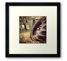 Tractor Tire Under Some Willow Trees Framed Print