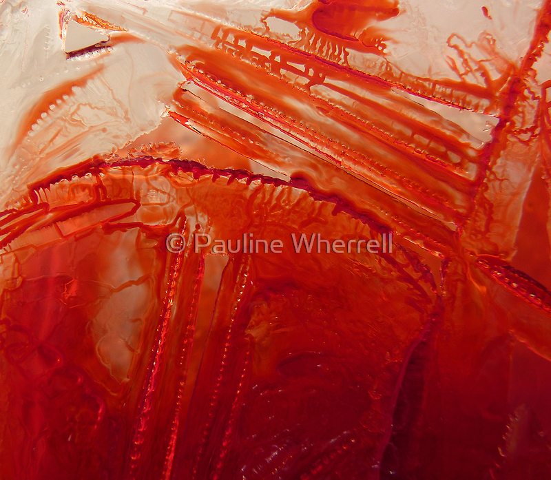 Ice abstract by © Pauline Wherrell