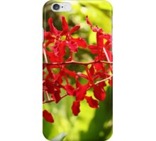 Singapore Orchids 11 iPhone Case/Skin