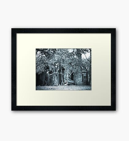 """Hello! Anybody Home?"" Framed Print"
