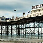 Palace Pier by NadineBurzler