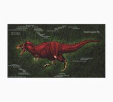 Tyrannosaurus Rex Muscle Study Baby Tee