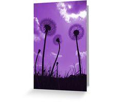 Dandelions in Purple Greeting Card