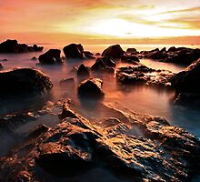 Senggigi Reef by randi83