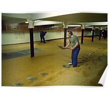 Maltsters turning malt in Langley Maltings, W. Midlands, 1980s Poster