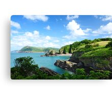Water Scape Canvas Print