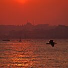 Istanbul during the sunset. by rasim1