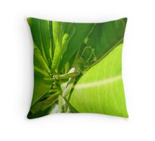 Grasshopper insect Throw Pillow
