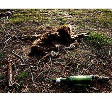Dead Kangaroo with beer bottle Photographic Print