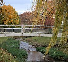 Autumn at Brough Beck Footbridge by Lindamell