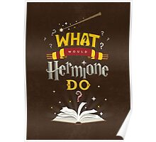 What Would Hermione Do? Poster