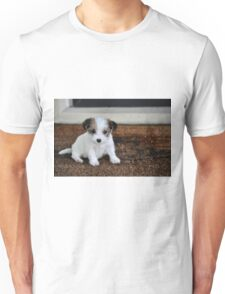 Present on the doorstep Unisex T-Shirt