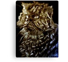 Fur Ball-The Face of Fur Canvas Print