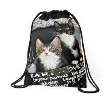 Kittens in a box Drawstring Bag