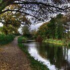 Grand Western Canal at Crown Hill by Rob Hawkins