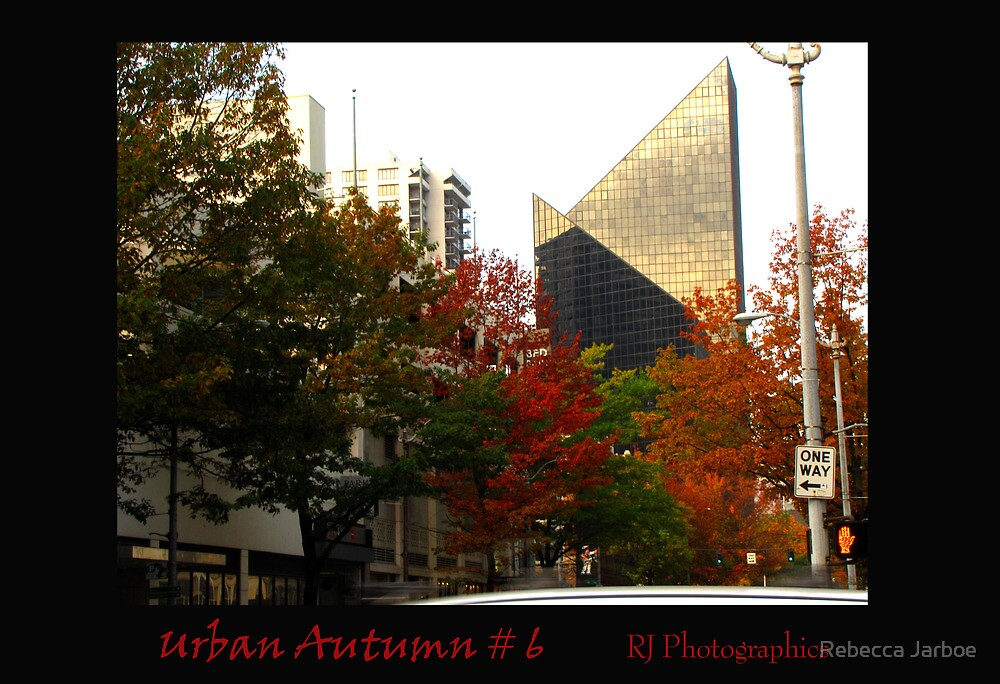 Urban Autumn 6 by Rebecca Jarboe