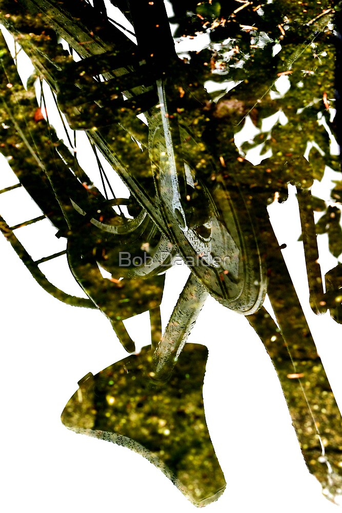 Bicycle reflected by Bob Daalder