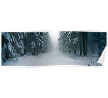 Snowy forest lane Poster