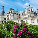 Château de Chambord, Loire Valley France by Melissa Fiene