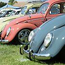 VW Bug by Rita  H. Ireland