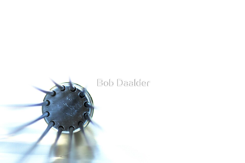 Another whisk II by Bob Daalder
