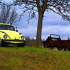 Punch Buggie Yellow: No Punch Backs!! by nikspix