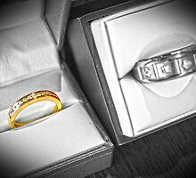 Rings by Bailey Designs