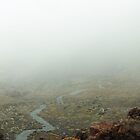 Foggy Tongariro Crossing II, New Zealand by Janis Möller