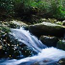 Roaring Fork by Phillip M. Burrow