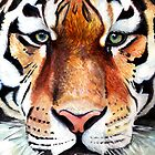 Eye of the Tiger by freyabigg