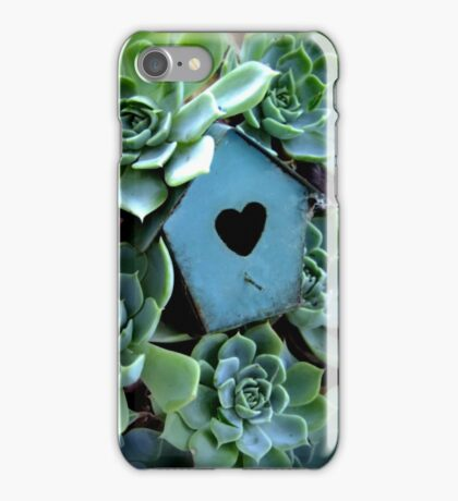 Echeveria Glauca iPhone Case/Skin