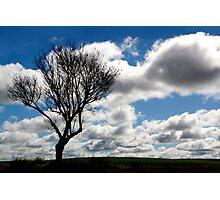 Silhouette Landscape Photographic Print